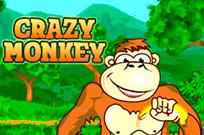Играть бесплатно в игровой Фортуны Crazy Monkey